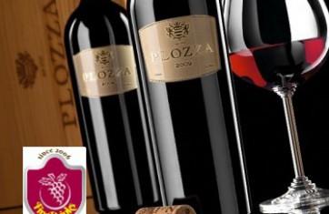 Rượu Vang Plozza